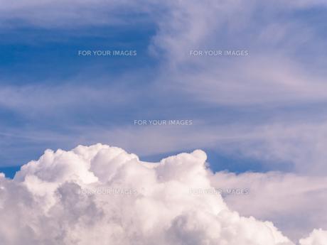夏の青空の写真素材 [FYI00238991]