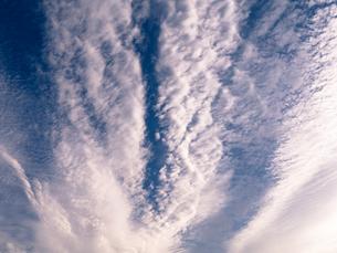 秋空の写真素材 [FYI00239001]