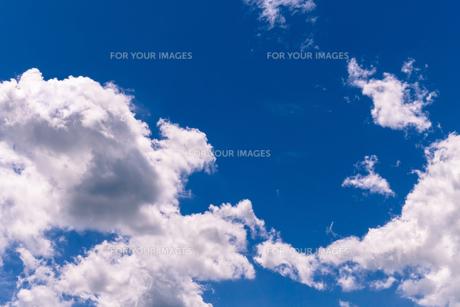 夏の青空の写真素材 [FYI00239005]