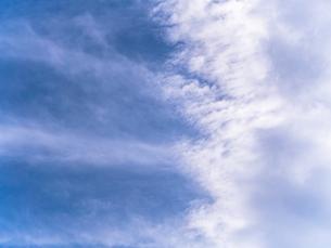 夏の青空の素材 [FYI00239058]