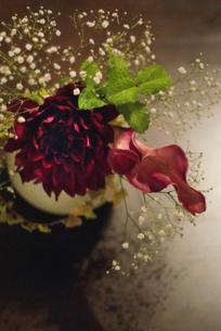 FLOWERの写真素材 [FYI00239094]