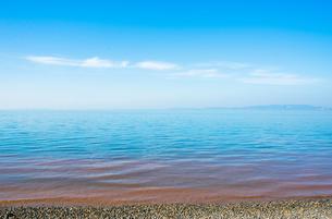 赤潮の海の写真素材 [FYI00239122]