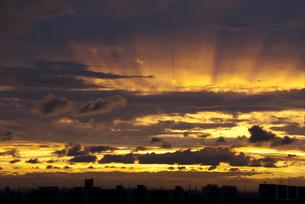 秋の夕暮れの写真素材 [FYI00240270]