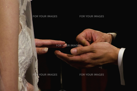 指輪交換の写真素材 [FYI00240304]