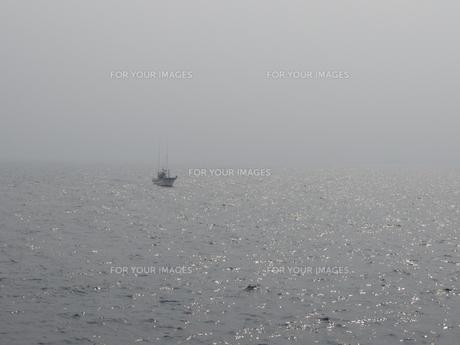 霧の中の船の素材 [FYI00240317]