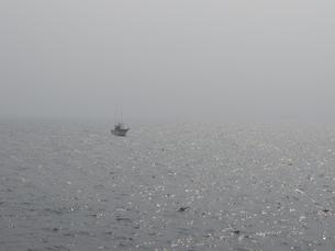 霧の中の船の写真素材 [FYI00240317]