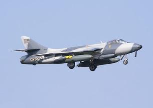 青空のもと飛行するアメリカの会社が所有する元イギリス空軍のハンター戦闘機の写真素材 [FYI00240364]