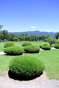 信州長野、松本城の本丸御殿跡の庭園の写真素材 [FYI00240428]