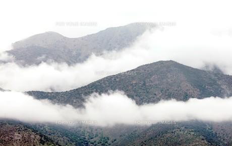 墨絵のような朝霧に煙る山里の森の素材 [FYI00240448]