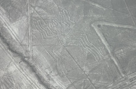 南米ペルーの世界遺産、ナスカの地上絵の空撮の写真素材 [FYI00240455]
