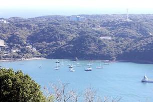伊豆下田の寝姿山から望む下田港と太平洋の写真素材 [FYI00240519]
