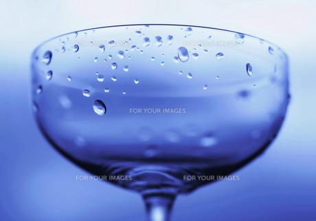 グラスの素材 [FYI00240652]