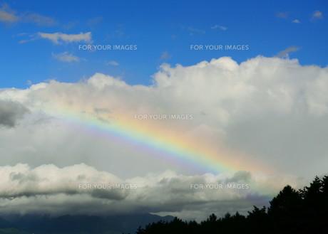 虹の素材 [FYI00240659]