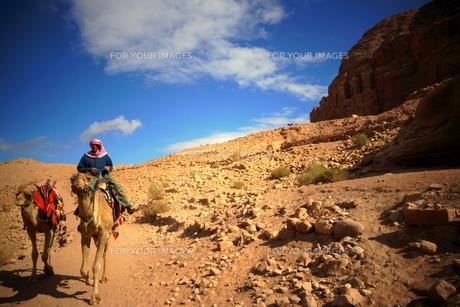 ラクダと遊牧民の写真素材 [FYI00240700]