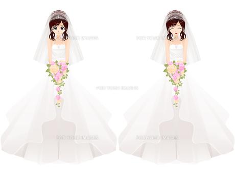 ウェディングドレスの女性の写真素材 [FYI00241489]