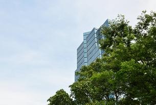 木陰からオフィスビルの写真素材 [FYI00241493]