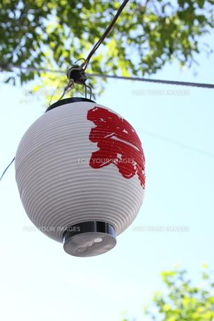 北海道の夏祭りの提灯の写真素材 [FYI00241539]