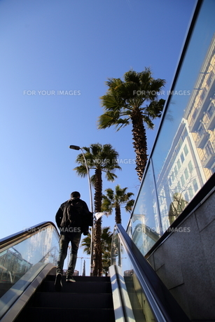 スペインのメトロ出口と椰子の木の写真素材 [FYI00241552]