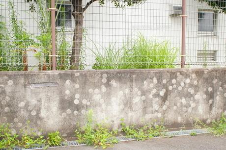 壁に残ったボールの跡の写真素材 [FYI00241607]