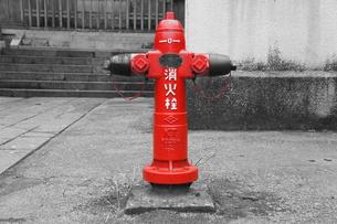赤い消火栓の写真素材 [FYI00241622]
