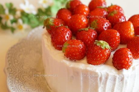 苺のケーキの素材 [FYI00242227]