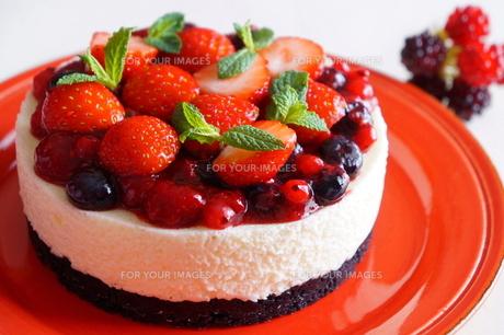 ベリーのケーキの素材 [FYI00242280]