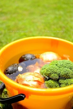 野菜プールの写真素材 [FYI00242437]