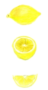 レモンの写真素材 [FYI00242688]