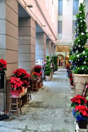 クリスマスの街の写真素材 [FYI00242711]