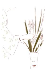 生花の素材 [FYI00242712]
