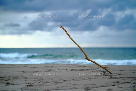 砂浜の佇まいの素材 [FYI00243085]