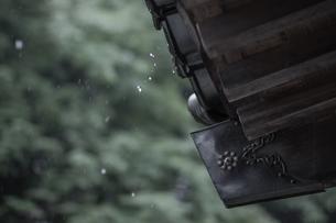 雨の神社の写真素材 [FYI00243091]