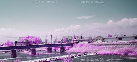 鉄橋に入る上高地線の電車の素材 [FYI00243114]