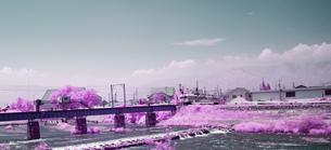 鉄橋に入る上高地線の電車の写真素材 [FYI00243114]