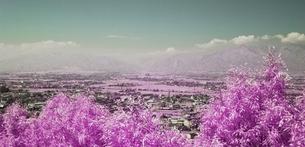 かすみがかった北アルプス乗鞍岳の峰々の写真素材 [FYI00243123]