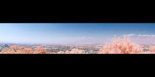 南北に連なる霞がかった北アルプス連峰のパノラマ眺望の写真素材 [FYI00243151]