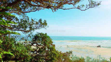 沖縄の海の写真素材 [FYI00243203]