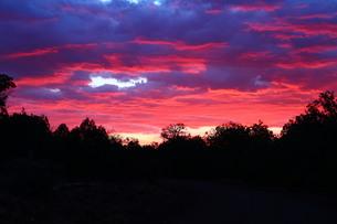 アリゾナ州の紫の夕焼けの素材 [FYI00243248]