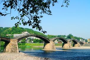 岩国市の錦帯橋の素材 [FYI00243257]