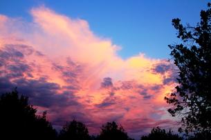 夕暮れのモンスーンの雲と森の素材 [FYI00243274]