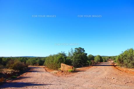 アリゾナ州の分かれ道の素材 [FYI00243283]