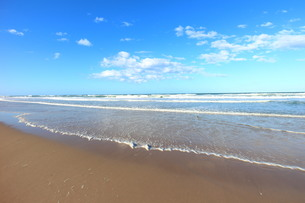 ゴールドコーストのビーチと波の写真素材 [FYI00243305]