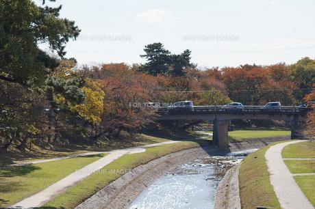 秋の岡崎公園の写真素材 [FYI00243362]