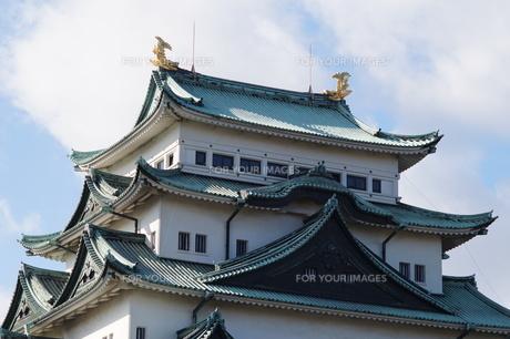 名古屋城の写真素材 [FYI00243369]