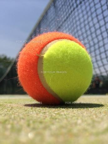 思い出のテニスボールの写真素材 [FYI00243530]