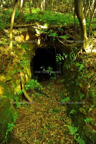 洞窟の写真素材 [FYI00243572]