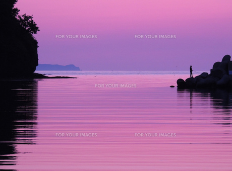紫の夕暮れの写真素材 [FYI00244292]