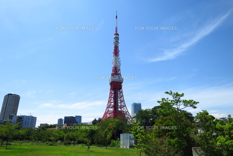 東京タワーの写真素材 [FYI00244434]