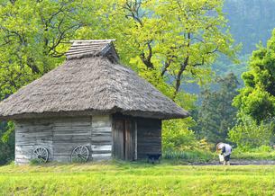 茅葺き小屋の写真素材 [FYI00244463]
