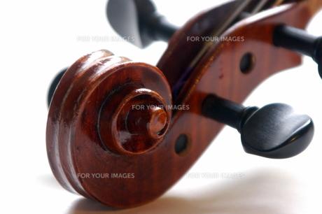 バイオリン渦巻きアップの写真素材 [FYI00244483]